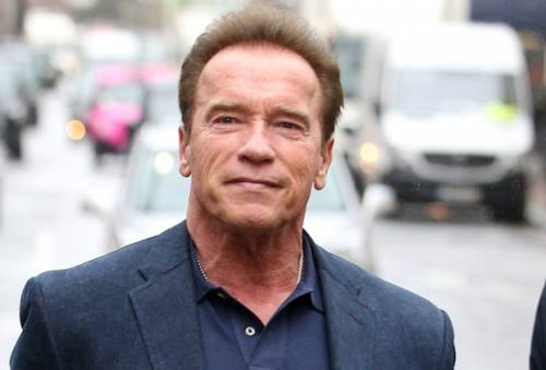 Arnold Schwarzenegger Attacked In South Africa  | Sahara Reporters
