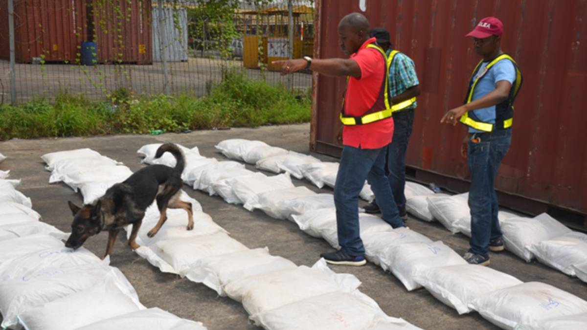 NDLEA agents and their drug-sniffing dog
